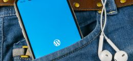 pocket mobile WordPress